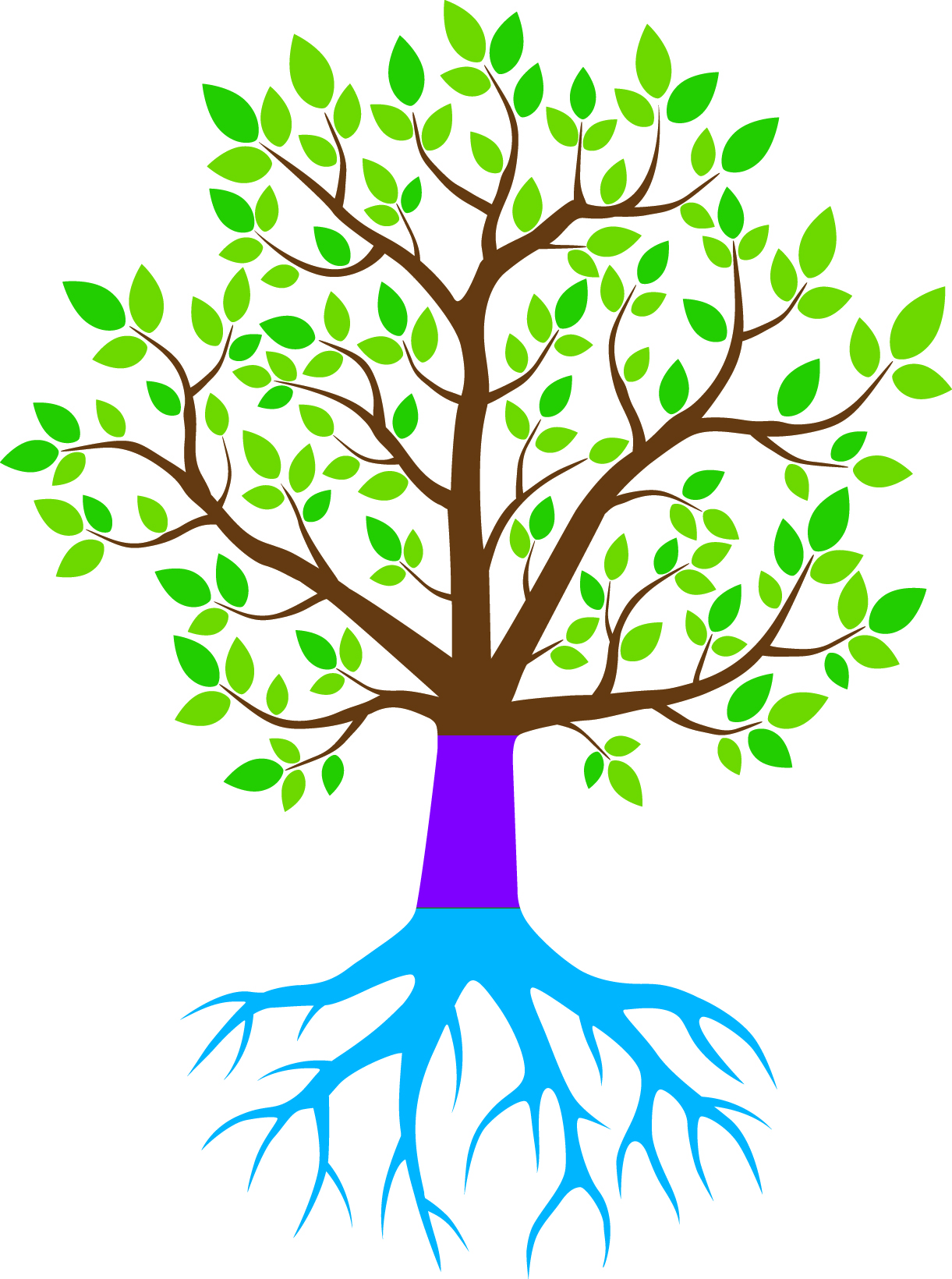 Click here to view the Legacy Tree Donors and add your name to this prestigious list of Community Members investing in our future.
